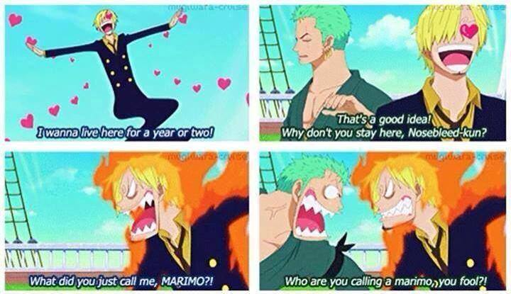 Zoro Vs Sanji One Piece Gold